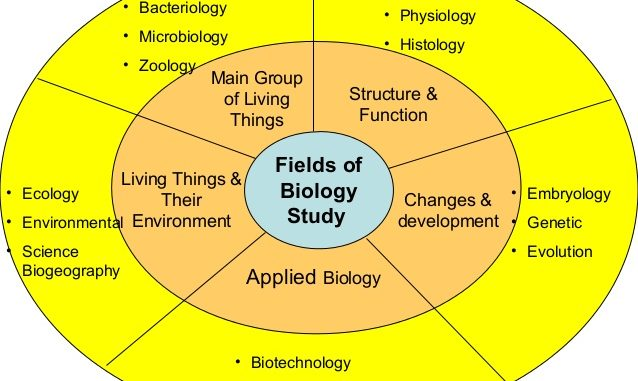 Scope of biology - Online Science Notes
