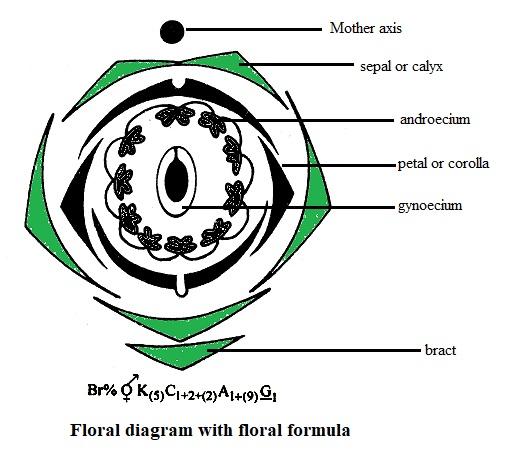 view technische mechanik 3 kinetik
