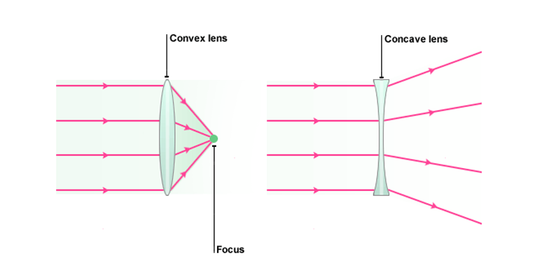 Convex Lens Vs Concave Lens : Images formed by convex and concave lenses online