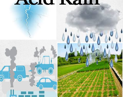 acid rain formation and effects online science notes. Black Bedroom Furniture Sets. Home Design Ideas